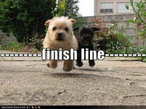 Getting to the novel writing finish line!